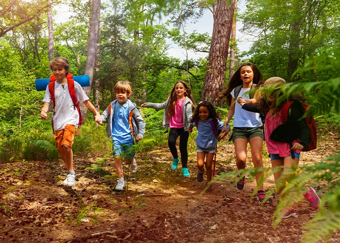 Young Cub Scouts hiking in the bush